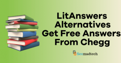 8 Best LitAnswers Alternatives For Free Chegg Answers