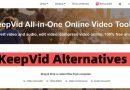 keepvid alternatives